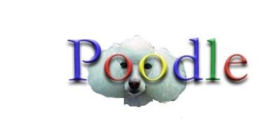Poodle_1